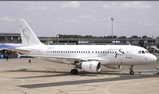 Srednji zračni prijevoznik 319
