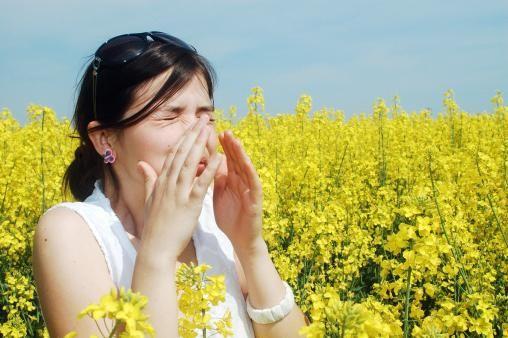Alergija na ragweed