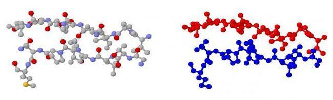 строение молекул углеводов