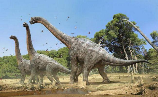 dinosaur s dugim vratom