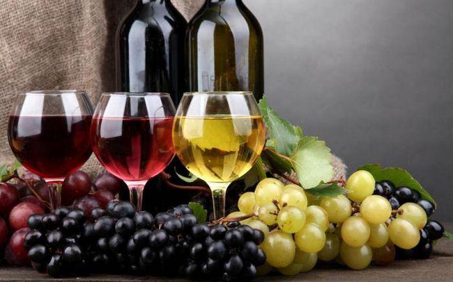 vrste vina