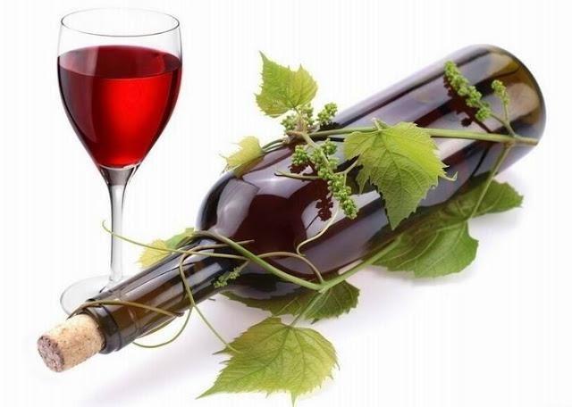 klasifikacija vinove loze
