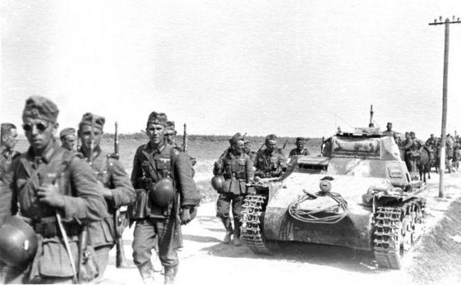 Винтовки Второй мировой войны. Стрелковое оружие. Трехлинейка Мосина