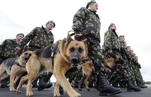 unutarnje trupe Rusije
