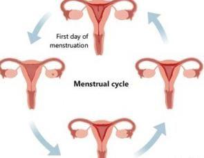 Je li moguće doći do trudnoće prije tjedan dana mjesečno?