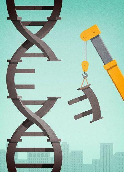degeneracija genetskog koda manifestira se u činjenici da